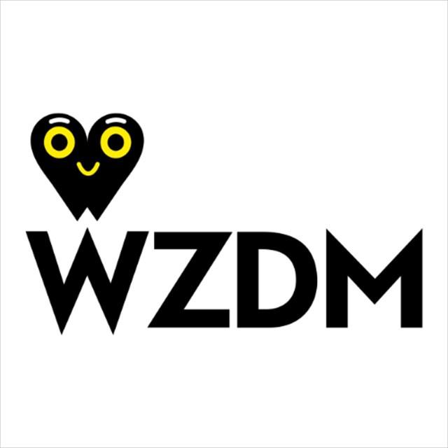 WZDM XR